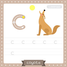 Letter C Lowercase Tracing Practice Worksheet. Howling Coyote