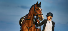 Girl Equestrian Rider Riding A Beautiful Horse  In The Rays Of The Setting Sun. Horse Theme