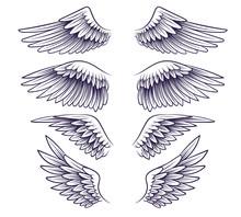 Hand Drawn Wing. Sketch Angel ...