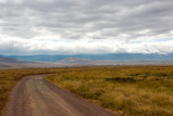 Fototapeta Sawanna - タンザニア・ンゴロンゴロの平原と空に広がる雲