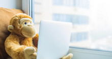 Plush Monkey With A Laptop On The Windowsill Close-up. The Concept Of Online Communication