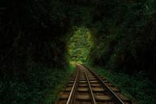 Railroad Through A Hole In The...