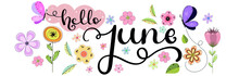 Hello June. June Month Vector...