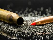 .223 5.56 Caliber Bullet, Casi...