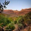 Leinwandbild Motiv Scenic View Of Desert Against Clear Sky