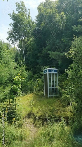 Photo Telephone Booth Amidst Plants At Algonquin Provincial Park