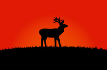 The Black Silhouette Of A Moos...
