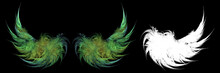 Green Fairy Wings On Black Bac...