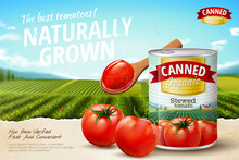 Canned Tomato Ads