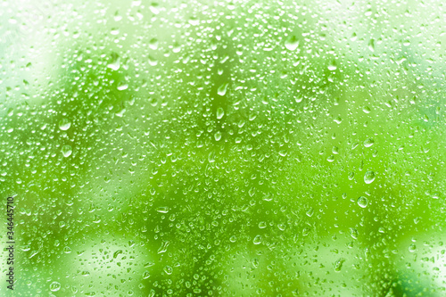 glass window with rainy droplets green trees on background Wallpaper Mural