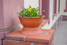 Vase Of Flowers On A Pedestal ...