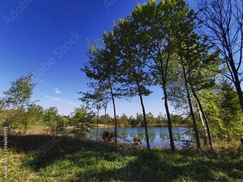 Fototapeta Landschaften; Hopfen; Feld; Ackerbau; Natur; Kirche; obraz na płótnie