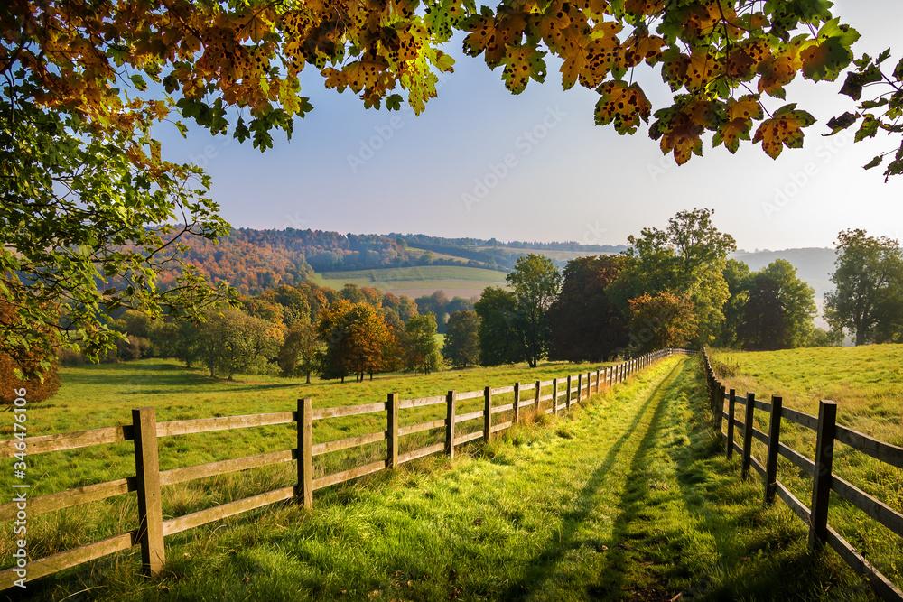 Fototapeta autumn footpath in the english countryside