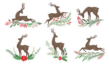 Brown Deer With Antlers And Wi...