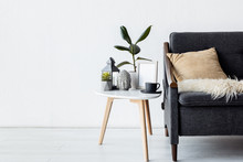 Modern Sofa With Pillow Near C...