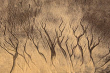 Structures In The Sand From Tiny Trickling Rivulets