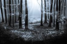 Woodland Illustration In Black...