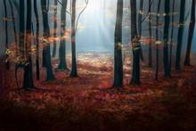Atumn Woodland Scene Illustrat...