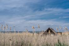 Cabin At Lake Neusiedl In Burgenland, Austria