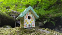 Wooden Birdhouse On Rock At Fo...