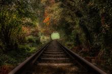 Vías De Ferrocarril Atravesan...