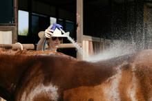 Western Farm Lifestyle Shows W...