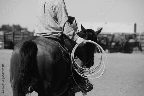 Photo Western rodeo lifestyle, horseback riding with rope for roping practice in black and white