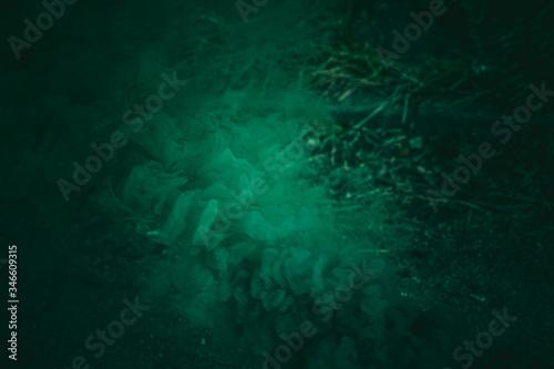 Abstrakcyjne tło ciemno zielone, winieta. - fototapety na wymiar