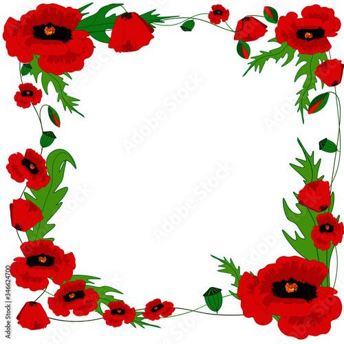 poppy frame - 346624700