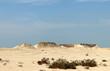 canvas print picture - désert du Qatar et champignon rock