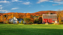 Autumn Leaves On A Farmhouse A...