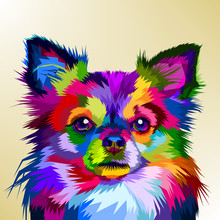 Colorful Chihuahua Dog In Pop ...