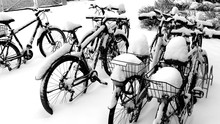 Snow Covered Bicycles At Parking Lot