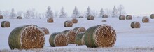 Panoramic Shot Of Hay Bales On Snow Covered Field