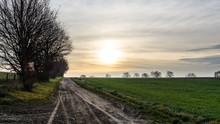 Neblige Winterlandschaft In Mecklenburg Mit Der Sonne Hinter Dichten Wolken