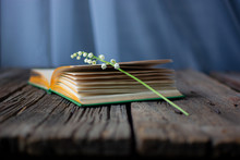 Open Book With Flower On Woode...