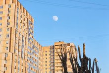 Cityscape With Moon And Improp...