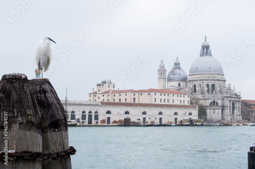 venice, church, architecture, italy, cathedral, landmark, building, dome, travel Fototapete