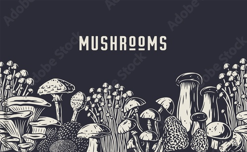 Slika na platnu Autumn forest mushroom picking, vegan menu pattern