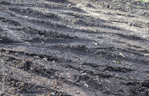 Close up view on agricultural acres with tractor tracks during a drought Wallpaper Mural