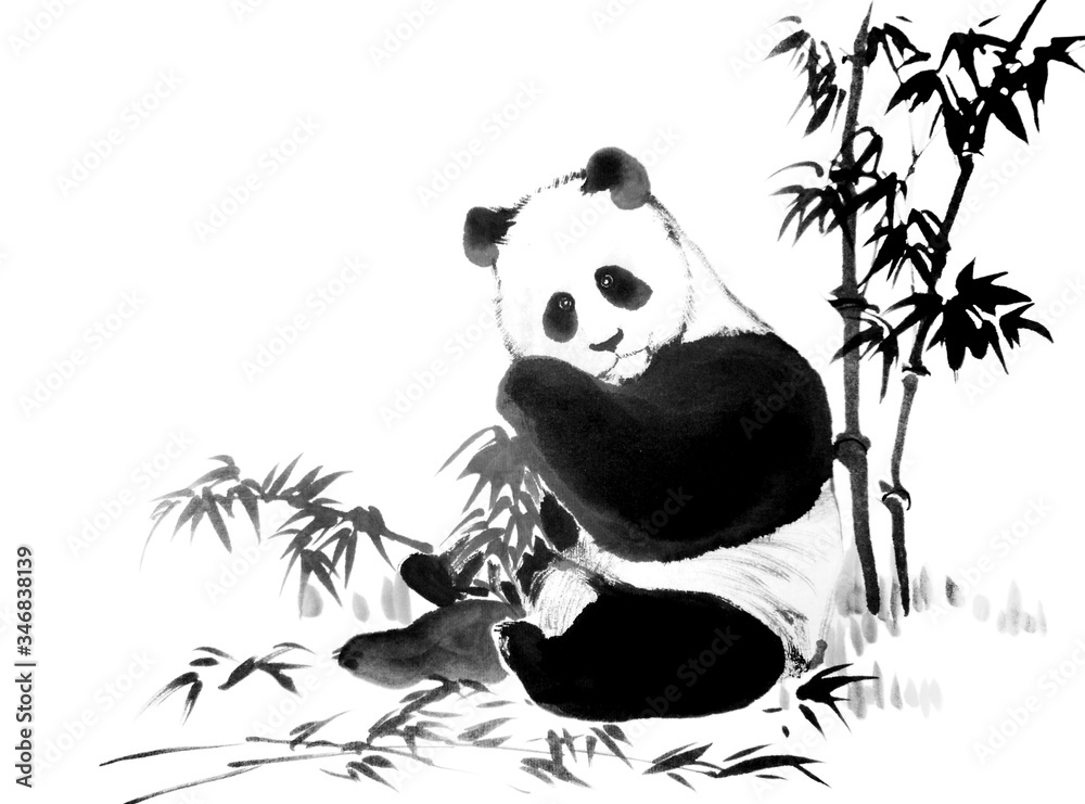 Oriental style painting of panda with a branch of bamboo. Traditional chinese ink and wash painting isolated on white background. Original hand drawn watercolor stock illustration.
