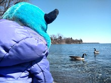 Rear View Of Person In Winter Coat With Canada Goose Swimming On Lake In Background