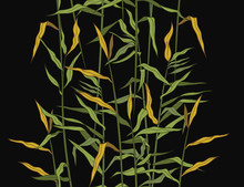 Cane..Hand Drawn .colored Seamless Pattern On A Black Background. Vector Vintage Illustration.