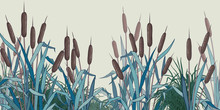 .Bulrush And Herbs . Vector Ba...