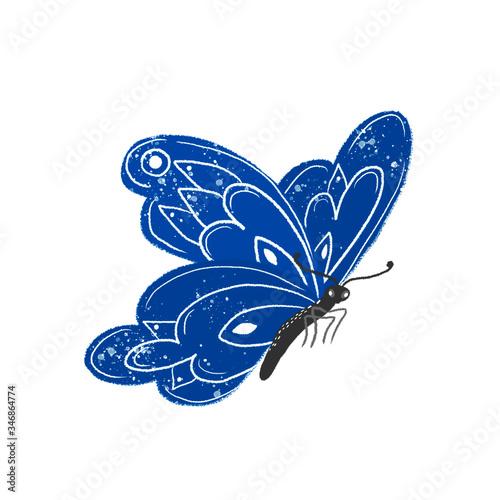 Fotografie, Obraz Butterfly is blue