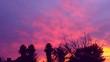 Leinwandbild Motiv Silhouette Of Trees Against Cloudy Sky At Sunset