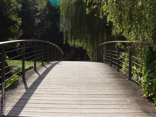 Canvas Print Narrow Wooden Walkway Along Trees In Park