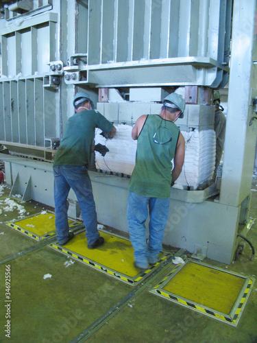 ALGODÃO, plantação de algodão, colheita de algodão Canvas Print