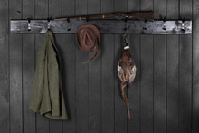 Pheasant Carcass,hunting Hat With Feathers,Hunting Gear On Wooden Background