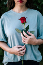Crop View Of Woman With Red Rose